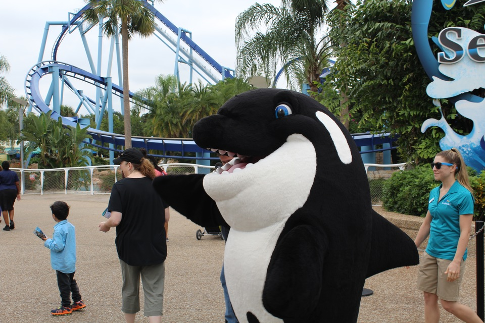 Sea world Celebration fall 2017